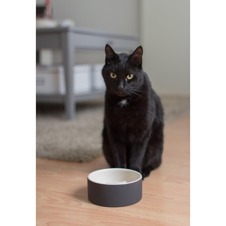 Magisso Cooling Ceramics Miska dla kota