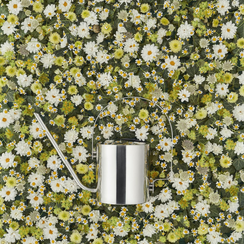 Stelton Original Konewka do kwiatów