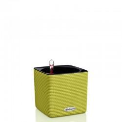 Lechuza Cube Color 16 donica matowa z wyjmowanym wkładem
