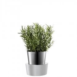 Herbs doniczka na zioła