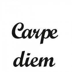 Carpe Diem Napis dekoracyjny