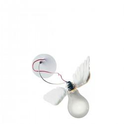 Lucellino NT lampa ścienna