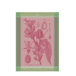 FLEURS D AMANDIER ROSE ręcznik kuchenny