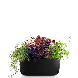 Selfwatering doniczka na zioła