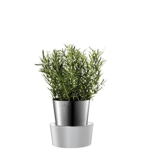 Auerhahn Herbs doniczka na zioła