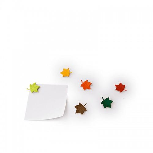 QUALY Leaf a Message Magnesy kolorowe