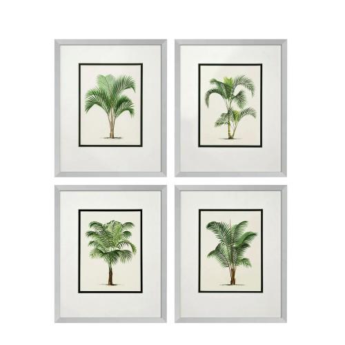 Eichholtz Palms zestaw 4 fotoobrazów