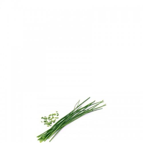 Veritable Lingot Wkład nasienny szczypiorek