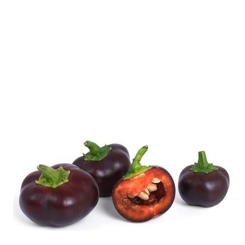 Veritable Lingot Wkład nasienny, mini warzywa - papryka czekoladowa