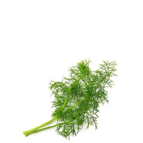 Veritable Lingot Wkład nasienny, zioła nietypowe - fenkuł