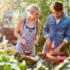 Wusthof Urban Farmer Koszyk na noże i akcesoria kuchnne zdjęcie dodatkowe 2