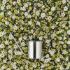 Stelton Original Konewka do kwiatów zdjęcie dodatkowe 2